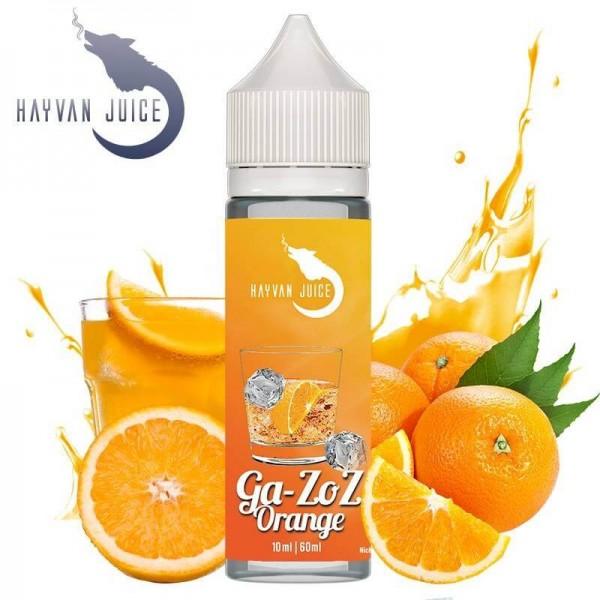 Hayvan Juice - GA-ZOZ ORANGE