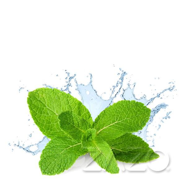 Fresh Mint E-Liquid 10ml von ZAZO
